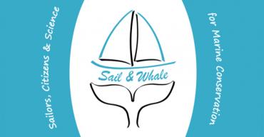 Sail & Whale