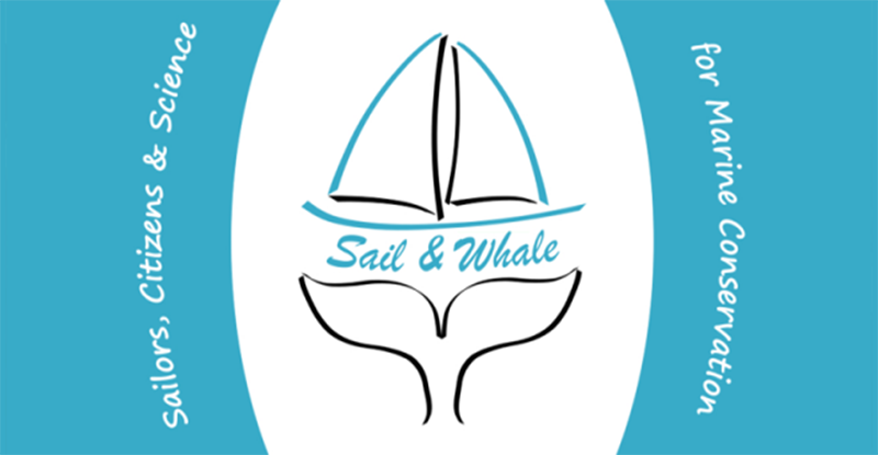 """<a class=""""wonderplugin-gridgallery-posttitle-link"""" href=""""https://apprentisnomades.org/sail-whale/"""">Sail & Whale</a>"""